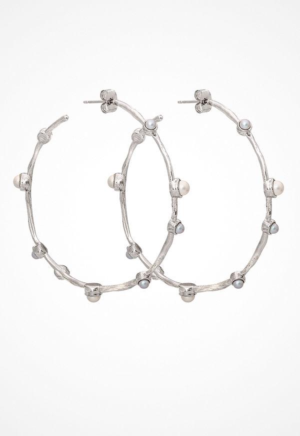 Lily and Rose örhängen Jagger Hoops Earrings