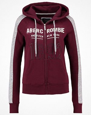 Abercrombie & Fitch CORE  Sweatshirt red