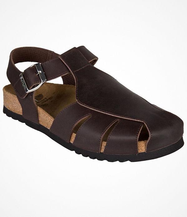 Scholl Sisare AD  Dark brown leather
