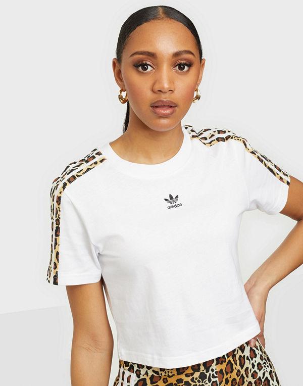 Adidas Originals CROPPED TEE